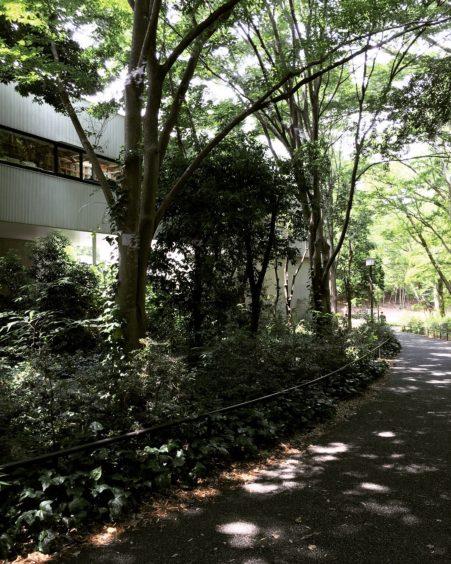 横河健 事務所