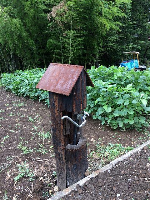 水道の小屋