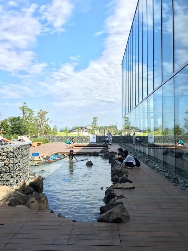 上越市立水族博物館うみがたりのタッチプール。人も入れる