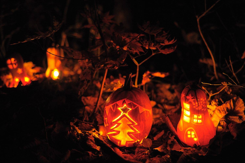 かぼちゃランタンで こびとの村づくり