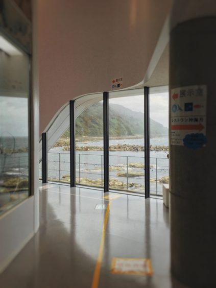加茂水族館、展示ゾーン前に海の景色