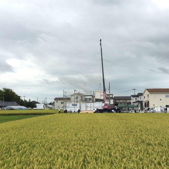 新潟県で初の木造大型パネルの建て方