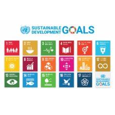 SDGs17tiles
